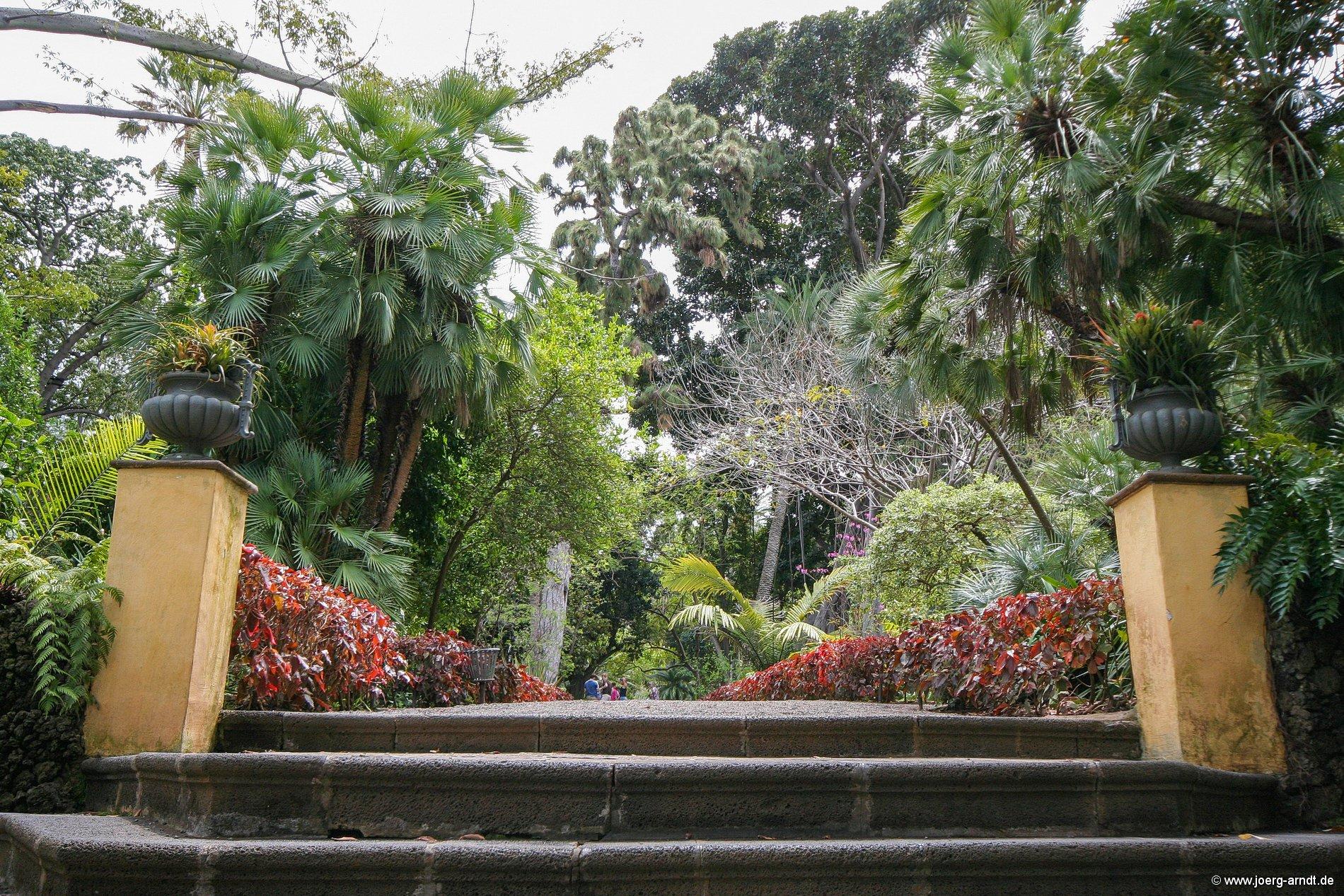 der botanische garten von puerto de la cruz bilder und mehr. Black Bedroom Furniture Sets. Home Design Ideas