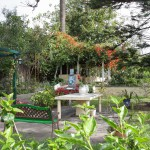Orchideengarten Sitio Litre in Puerto de la Cruz